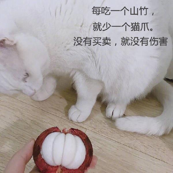 2018 青年福利微刊第 78 期:人生五愿