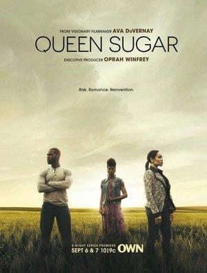 蔗糖女王第一季在线观看