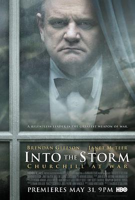 不惧风暴2009在线观看
