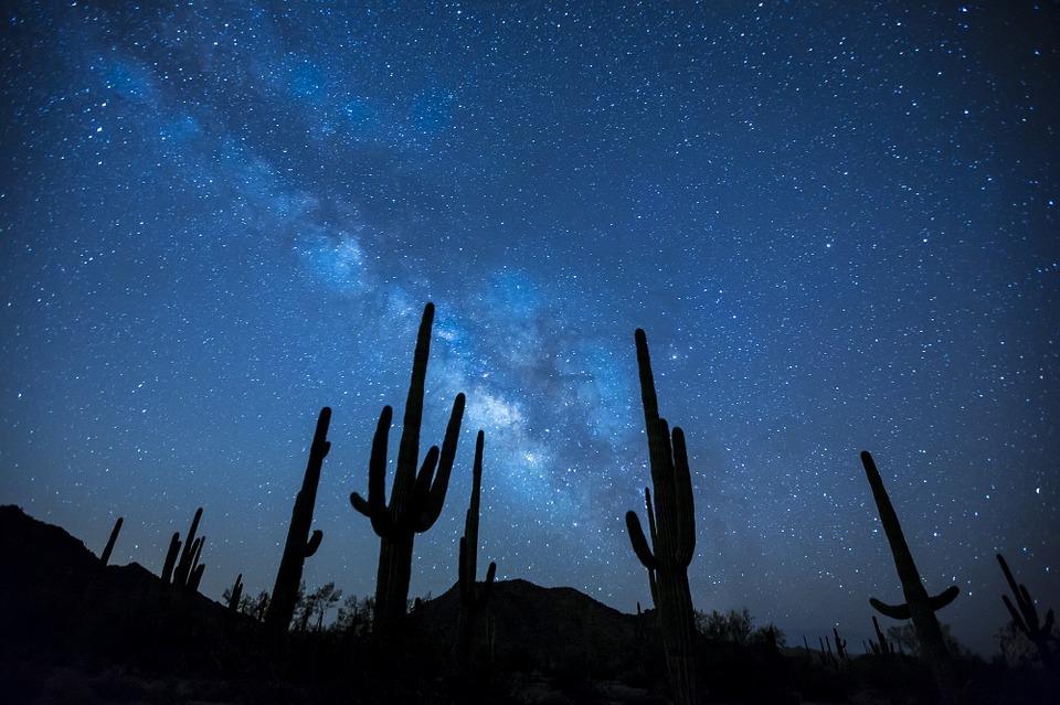 夜空中最亮的星 - 徐薇